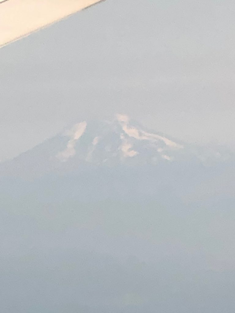 Mt. Adams seen from the air.