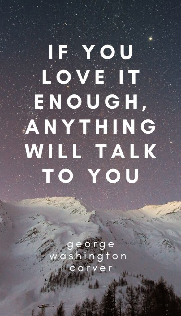 """If you love it enough, anything will talk to you."" - George Washington Carver"